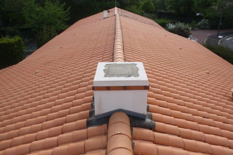 Pro Nettoyage 85 nettoyage de toitures en Vendée.