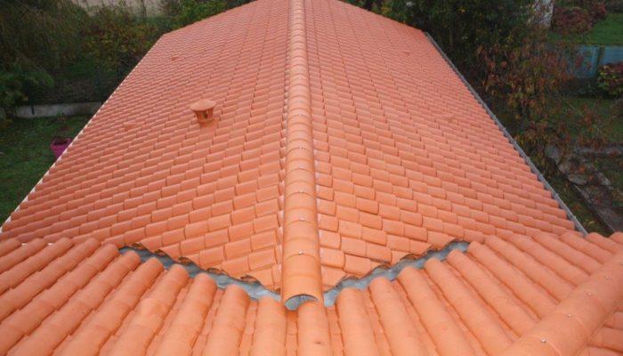 nettoyage de toiture en Vendée